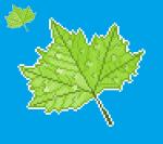 49_leaf